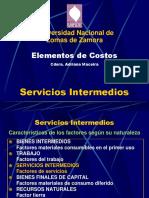 Servicios Intermedios