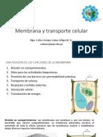02 Membrana y Transporte Celular