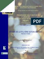 Coton au Congo.pdf