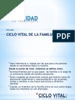 5TA CLASE CICLO VITAL DE LA FAMILIA