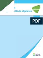 Cálculo Algebrico