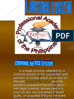Pillars of Criminal Justice System_ppt