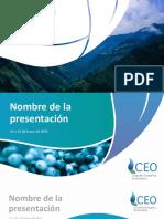 CEO Plantilla Ppt Abril 2019