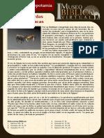 Ficha 027 Vacas Gordas y Vacas Flacas