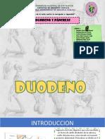 Duodeno y Pancreas Grupo 2 Listo