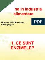 Enzime in Industria Alimentara