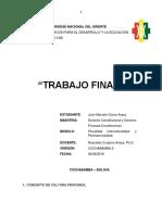 CULTURA TRABAJO FINAL MARCELO CLAROS 02-06-19.docx