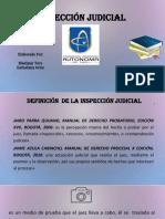 Inspeccion Judicial 2019 Probatorio