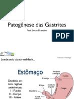 Patogenese Das Gastrites