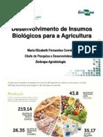Maria Elizabeth Correia – Chefe de Pesquisa e Desenvolvimento da Embrapa Agrobiologia