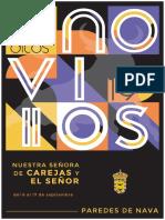 Paredes de Nava Los Benditos Novillos 2019 1