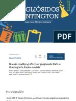 Gangliósidos y Huntington Presentacion