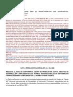 1 a Modelo Acta de Creación Del Comité NIIF Version5