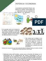 Capitulo 6 Potencia y Economia (1)