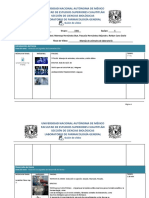 Formato_GuionVideo Primera Revision