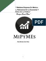 Pequeña Y Mediana Empresa En México.docx