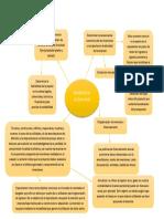 mapa inversion de activos fijos.docx