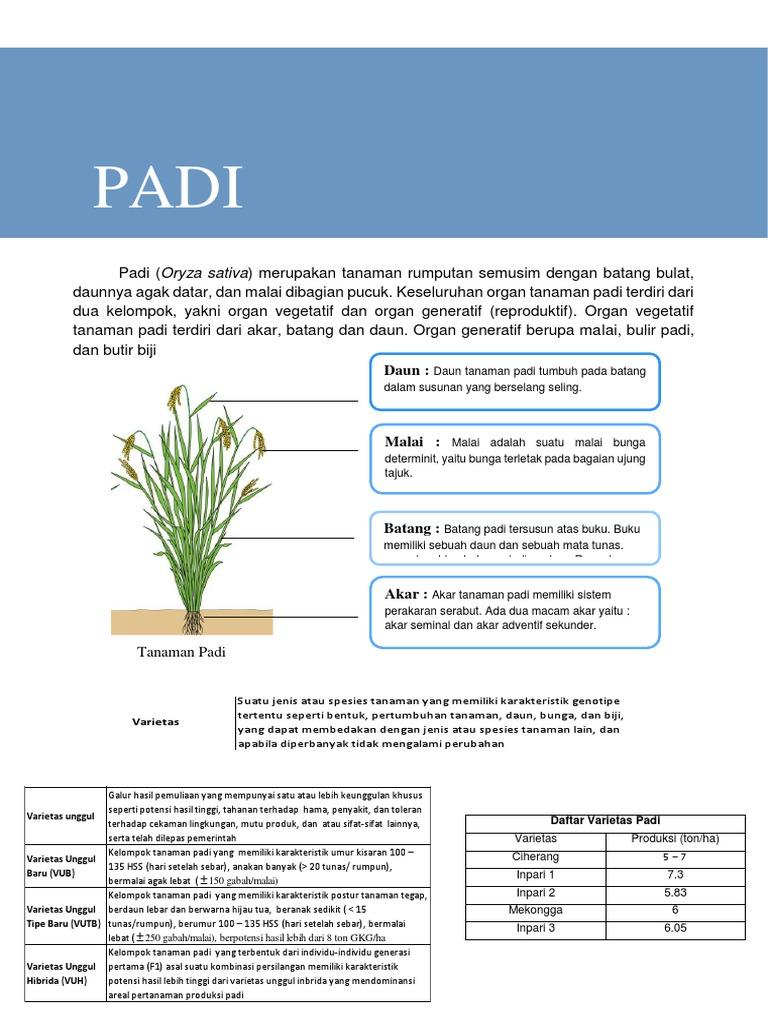 Padi Pdf Version 1