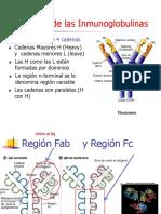T6. Anticuerpos. MH. InmunoGeneral 2019-2