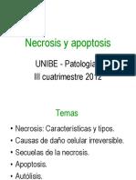 Necrosis y Apoptosis