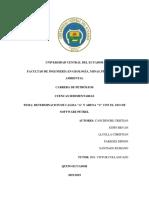 Informe-Cuencas-Sedimentarias.docx