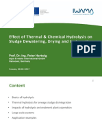 7 Effect of Thermal and Chemical Hydrolysis on Sludge Dewatering Hartwig