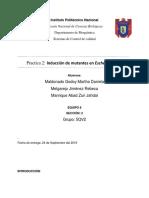 Reporte Mutagenesis Final