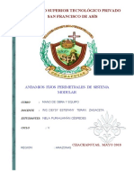 Informe Andamio Fijo Perimetral