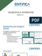Bioquímica Ambiental_Clase13