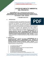 ESTUDIO AMBIENTAL CHICHUCANCHA.docx