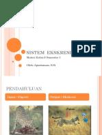 sistem-ekskresi (1).pptx