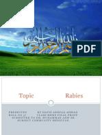 Presentation1.Pptx Rabies