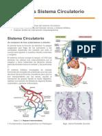 Alteraciones Sistema Circulatorio