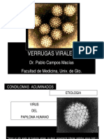 VPH - Pablo Campos.pdf