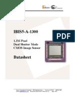 pdf_IBIS5A-1300[1]