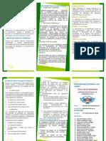 Final Triptico.pdf