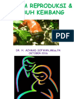 1.2. Anatomi Sistem Reproduksi-dikonversi.pptx