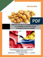 PLAN DE EXPORTACION DE MAIZ TOSTADO A PERÚ 2.docx
