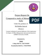 Rahul Project.docx