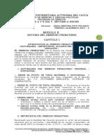 Modulo II Dto Practiva Pruebas Conceptos Basicos Tecnicas d Probatorio 2019 - 2