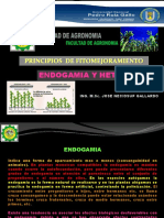 Fitomejoramiento - Endogamia y Heterosis