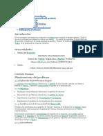 Desarrollo de Software de Un Sistema de Información