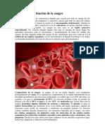 Composición y función de la sangre.docx