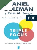 Triple_Focus_Un_nuevo_acercamiento.pdf