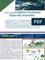 CONCEPTOS BASICOS ECOSISTEMAS DESRROLLO SOSTENIBLE.ppt