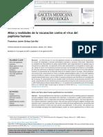 ochoacarrillo2015.pdf