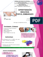 Hipertension Inducida Por El Embarazo