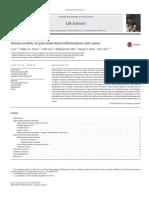 Modelos de Indução de Úlcera Gástrica Aguda e Crônica