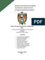 Estructura-funcional- Cuadro Sinóptico Indecopi