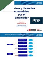Permisos y Licencias Concedidas Por El Empleador VF